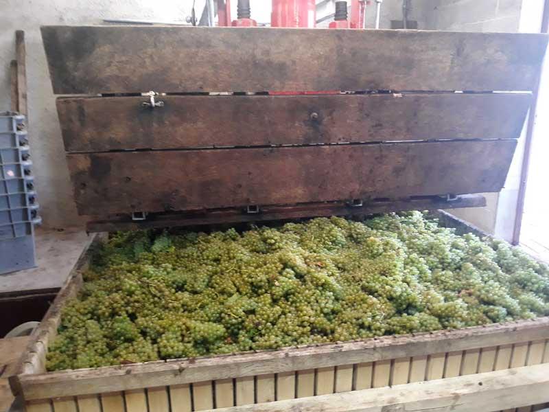 Pressoir Champagne Monthelon