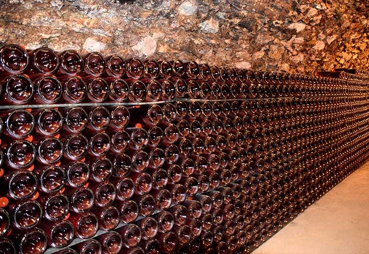 Cave de Champagne Sylvain Pienne